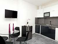 Ap 1 kuchyňský kout - pronájem apartmánu Třeboň