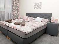 Ap 1 ložnice - Třeboň