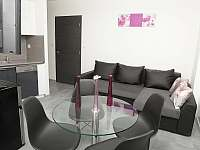 Ap 1 pokoj - apartmán k pronájmu Třeboň