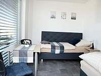 Ap 2 pokoj 1 - apartmán k pronájmu Třeboň