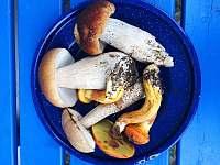 Chalupa Sen - chalupa - 14 Slavče u Trhových Svinů
