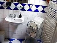 Apartmán Bakarloko Eli - koulena/ záchod 3 - k pronajmutí Lipno nad Vltavou