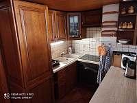 Kuchyň 2 - apartmán k pronájmu Horní Chrášťany