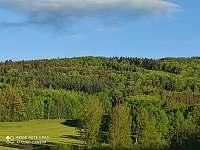 Okolní bukové lesy - Horní Chrášťany