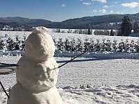 sněhulák na terase - chalupa k pronájmu Lipno nad Vltavou - Kobylnice