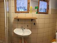 koupelna se sprchovým koutem - chata k pronajmutí Kovářov