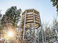 Stezka korunami stromů Lipno - rekreační dům k pronajmutí Rožmberk nad Vltavou