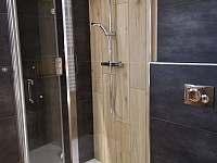 Sprchový kout - apartmán k pronajmutí Frymburk - Kovářov