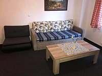 Apartmán ve wellness hotelu - apartmán k pronájmu - 3 Frymburk
