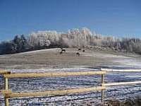 okolí v zimě - Nišovice