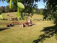 zahrada - chalupa k pronajmutí Nišovice