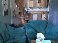 Apartmán u Orlické přehrady - apartmán k pronájmu - 15 Klučenice - Kamenice
