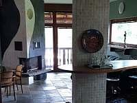 Apartmán u Orlické přehrady - pronájem apartmánu - 18 Klučenice - Kamenice