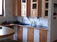 Apartmán u Orlické přehrady - pronájem apartmánu - 12 Klučenice - Kamenice
