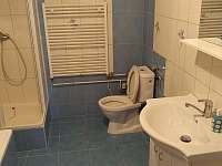 koupelna + WC v 1.PP - chalupa k pronájmu Milenovice