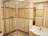 Apartmány koupelna - sprchový kout - k pronajmutí Kubova Huť