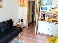 apartament s kuchynkou - k pronajmutí Lipno nad Vltavou