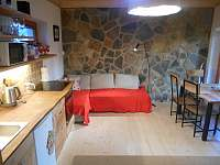 Obývací -pokoj - apartmán k pronajmutí Nová Bystřice - Hůrky