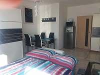 Byt s velkým balkonem - apartmán k pronajmutí Borovany u Českých Budějovic