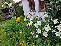 Zahrada s houpačkou - chalupa k pronajmutí Třeboň