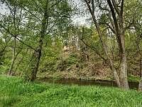 Riverside Cabin - chata - 32 Doudleby