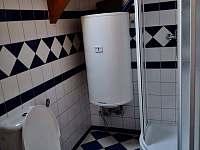 Koupelna se záchodem a sprchovým koutem - Lipno nad Vltavou