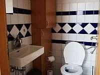 Samostatné WC dole - pronájem apartmánu Lipno nad Vltavou