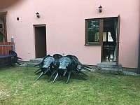 Sezení za domem - Lipno nad Vltavou