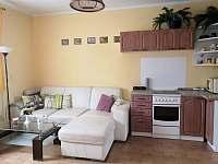 Kuchyň + obývák - pronájem chalupy Veselí nad Lužnicí