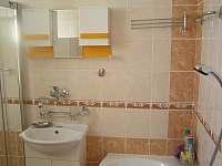 koupelna se sprchovým koutem, vanou - apartmán k pronajmutí Tábor
