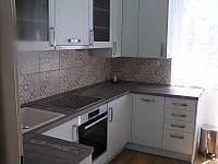 vybavená kuchyň - apartmán ubytování Tábor