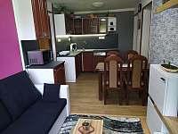 Obývák s kuchyňským koutem - apartmán ubytování Sezimovo Ústí