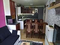 Obývák s kuchyňským koutem - apartmán k pronajmutí Sezimovo Ústí