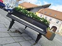 Blatná-město růží - pronájem chalupy Bělčice - Hostišovice