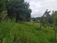 Louka na horní zahradě - chalupa k pronájmu Bělčice - Hostišovice