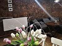 Dráchovský apartmán - apartmán k pronájmu - 28