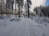 Běžkařské trasy jsou strojně udržované a značené - Horní Stropnice - Hojná Voda