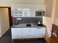 Apartmány wellness - apartmán k pronájmu - 10 Frymburk