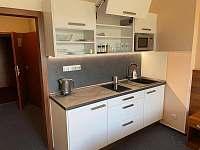 Apartmány wellness - apartmán k pronajmutí - 11 Frymburk