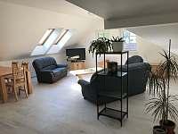 apartmán č.3 obývací pokoj - pronájem Suchdol nad Lužnicí - Tušť
