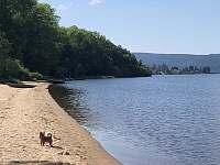 Písčitá pláž v dosahu - Bližná - Radslav