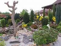 Apartmány Chlum u Třeboně - okrasná zahrada - pronájem