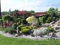 Apartmány Chlum u Třeboně - rozkvetlá zahrada -