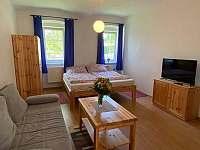 Apartmán u břehu Lipna - apartmán k pronajmutí - 4 Hůrka