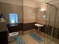 Koupelna se sprchovým koutem. - pronájem apartmánu Hůrka