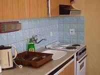 Chlum u Třeboně - Žíteč - apartmán k pronájmu - 2