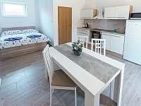 Čtyřlůžkový apartmán – AP2 - Třeboň - Břilice