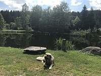 Chalupa k pronajmutí - chalupa k pronájmu - 10 Leopoldov - Novohradské hory