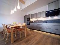 Lipno Port Apartment - apartmán k pronajmutí - 8