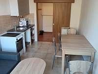Třílůžkový apartmán - rekreační dům ubytování Nová Bystřice